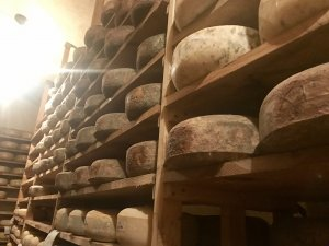 underground cheese cave