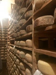 cheese cave 2